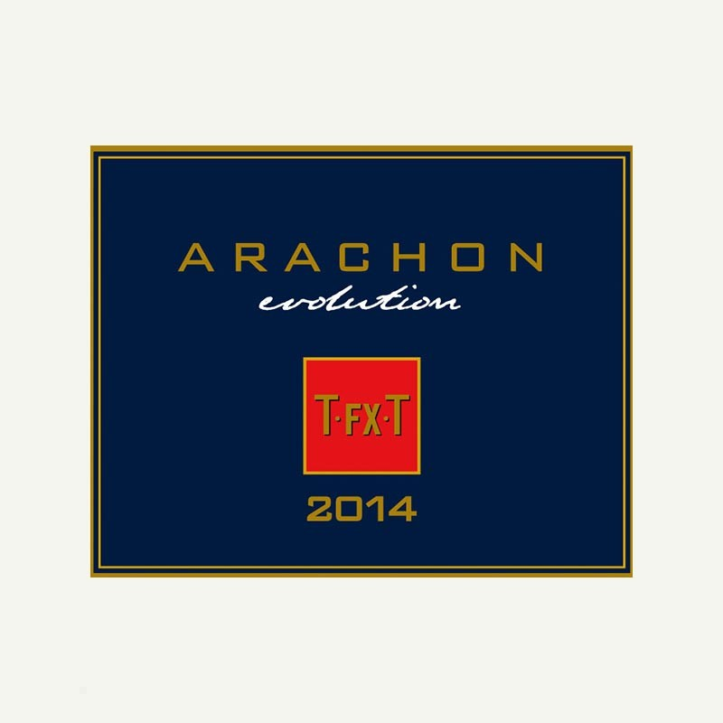 media/image/Arachon.jpg